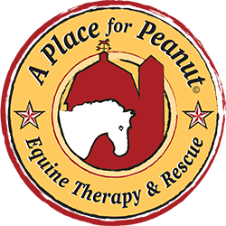 2nd Annual Gala Benefiting A Place for Peanut, Inc.