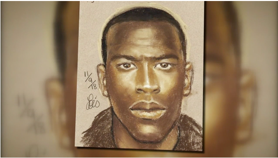 Harris County Deputies release sketch of serial purse snatching suspect.