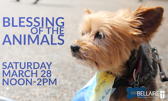 10th annual Blessing of the Animals