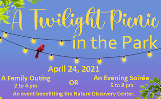 Twilight Picnic in the Park