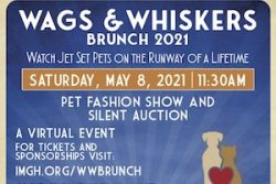 Wags and Whiskers Brunch