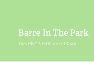 Barre In The Park